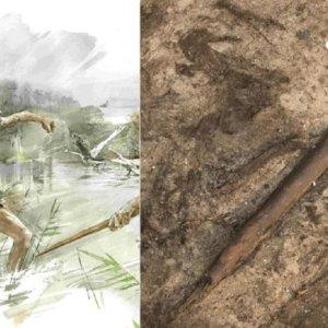 Descubren el arma de caza más antigua de la historia de la humanidad ¡tiene 300.000 años!