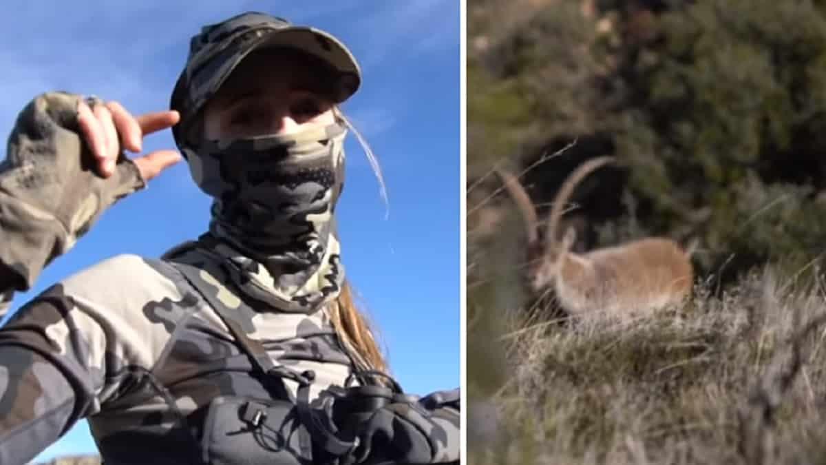 Este apasionante vídeo muestra la dificultad de la caza con arco en montaña