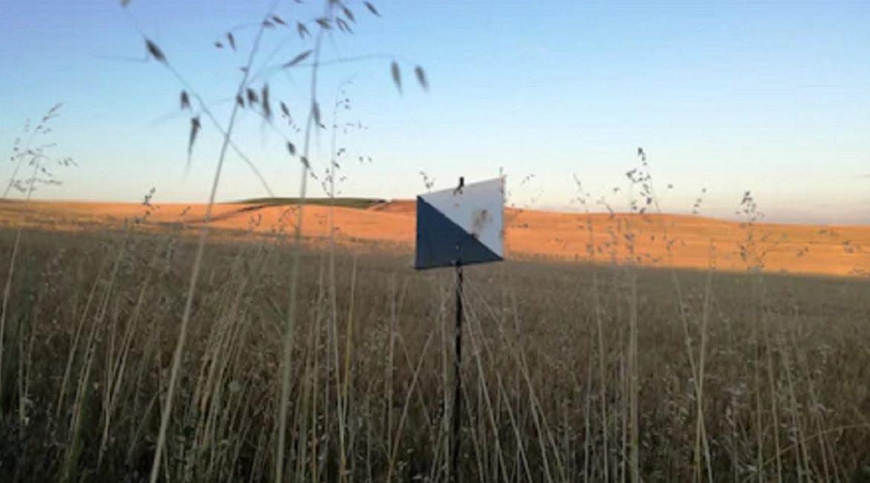Anulan el cierre y la sanción de 26.000 euros al titular de un coto de caza en Albacete