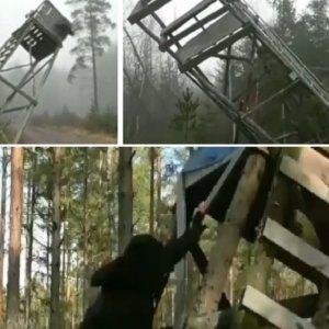 Varios animalistas se graban destrozando puestos de caza y lo suben a las redes para presumir