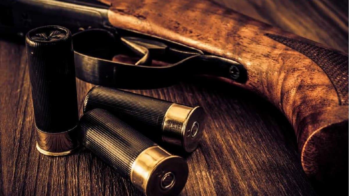Llamamiento a los cazadores para participar en este estudio sobre la munición de plomo