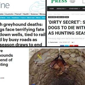 Animalistas catalanes usan la caza en una campaña contra España en Inglaterra