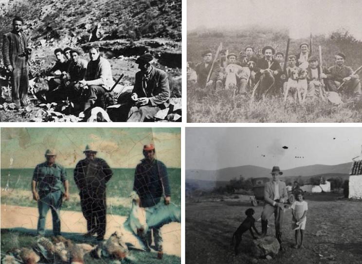 fotografías caza