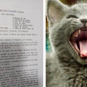 Una vieja receta de «gato guisado» revoluciona las redes
