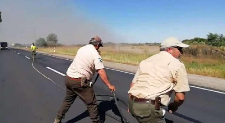 Los cazadores, los únicos que ayudan a extinguir un incendio en el corazón de Doñana