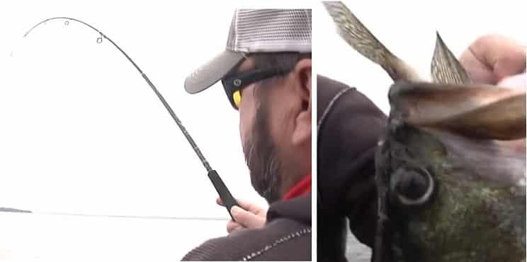 Este pescador consigue un doblete de un modo insólito