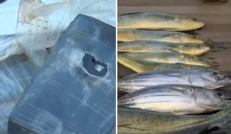 Pescan un paquete de cocaína valorado en 1 millón
