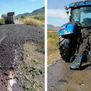 Un remolque con toneladas de uva desparrama su carga en un espectacular accidente