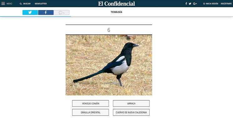 aves españolas