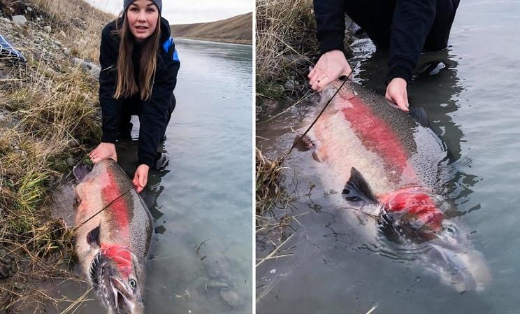 Una chica pesca un 'truchón' arcoíris del tamaño de un zorro
