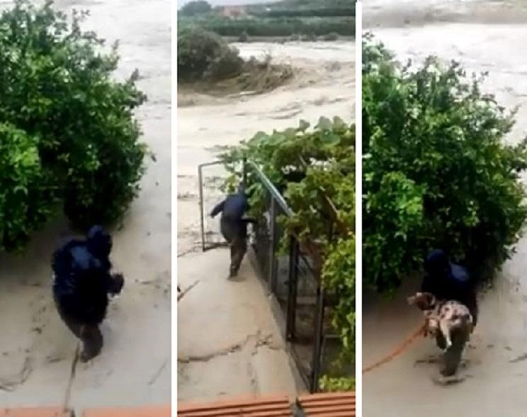 cazador rescata perro