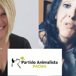 PACMA duplicó votos con su candidata homófoba, que ahora invita a matar maridos maltratadores