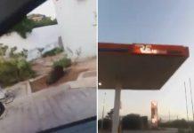 jabalí gasolinera
