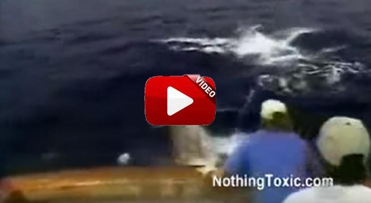 Un marlín gigante arrastra al fondo del mar a este pescador