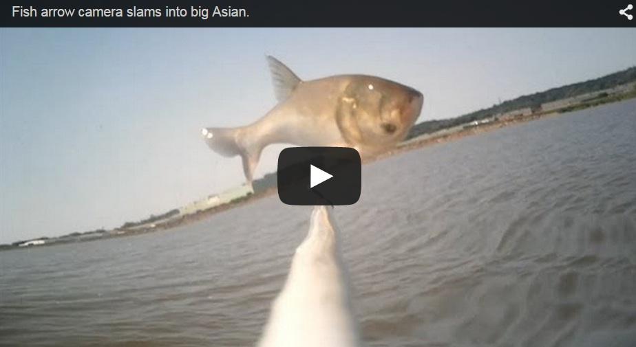 Pesca un pez al vuelo con su arco