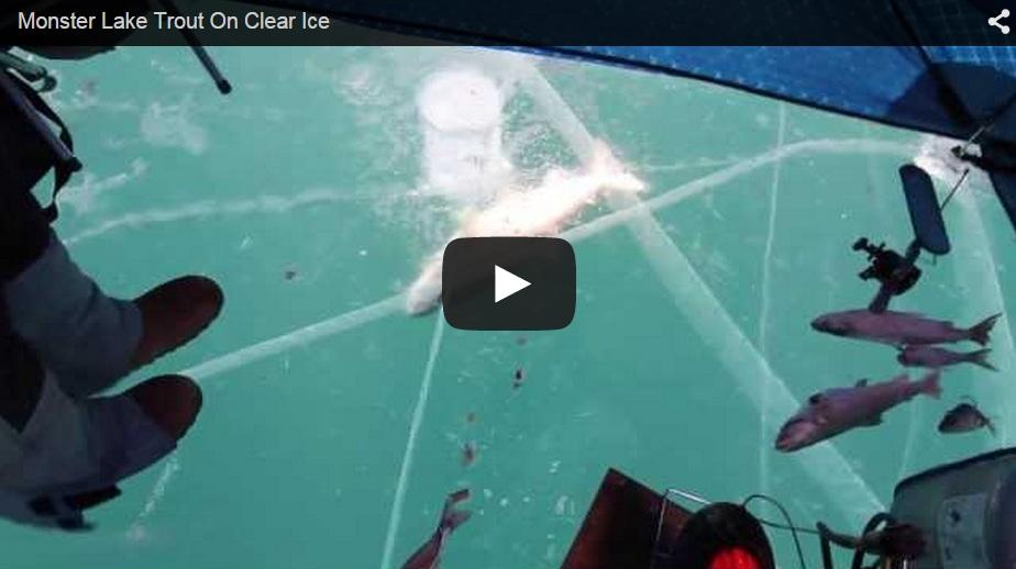 ¡Nueva entrega de pesca debajo del hielo!
