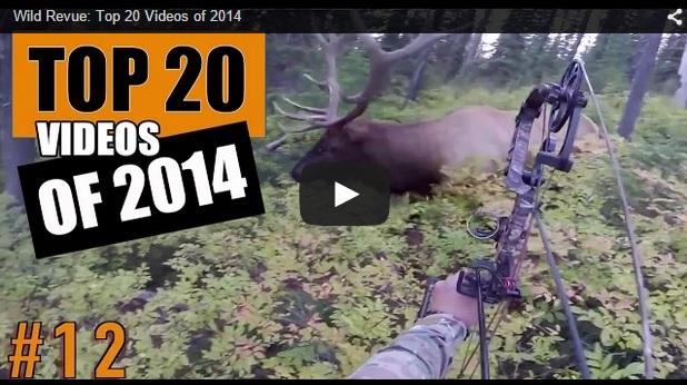 Los mejores vídeos de 2014