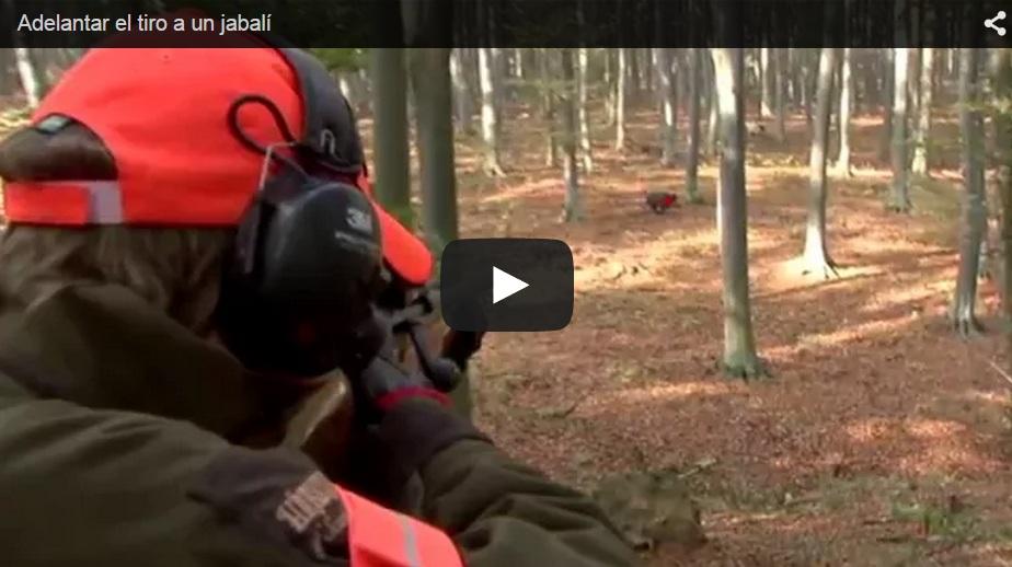 ¿Sabes cuánto adelantar el disparo en montería?