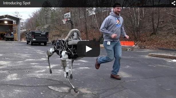 Llegan los 'animales robot'