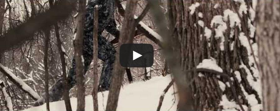 El vídeo que mejor representa la esencia de la caza