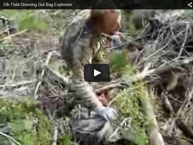 Cómo no eviscerar una pieza de caza mayor