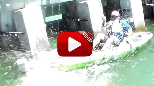 Atrapa desde un kayak un gigantesco mero goliat