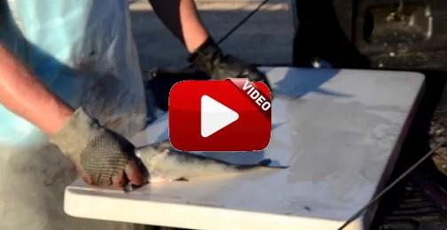 Limpia y eviscera este pez ¡en apenas 20 segundos!
