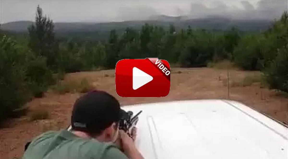 Se dispone a poner a tiro su rifle y… ¡mira lo que sucede!