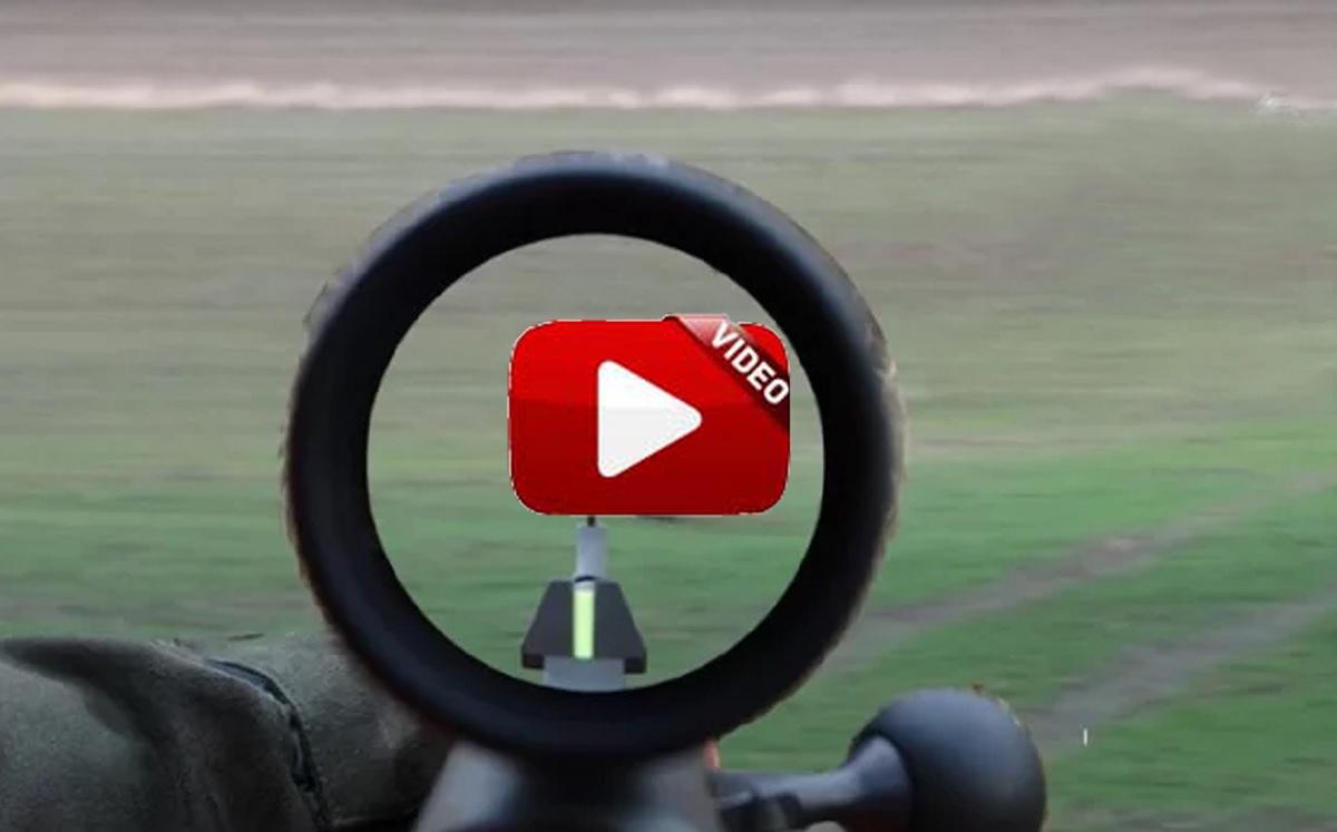 Recopilación de lances de caza mayor