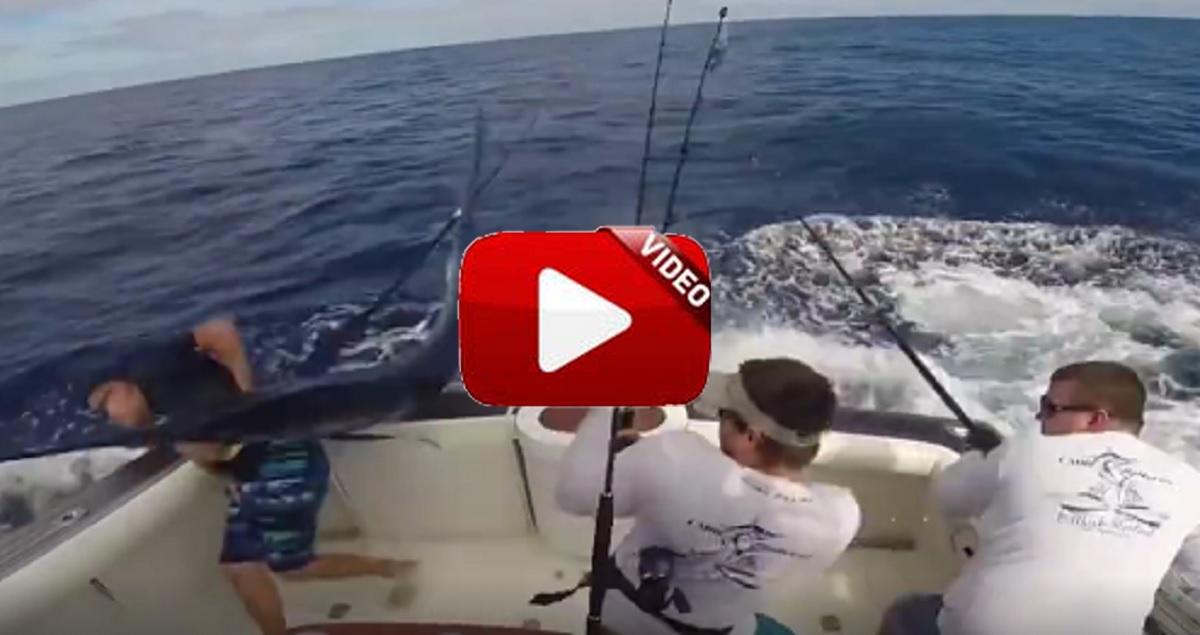 Este pescador a punto está de caer por la borda al ser golpeado por un marlín