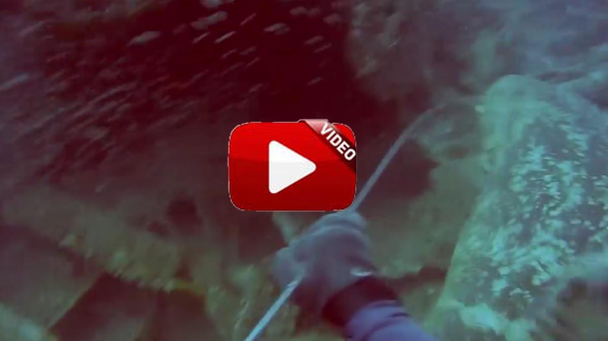 Un pescador pierde los estribos cuando un mero gigante le arrebata su captura