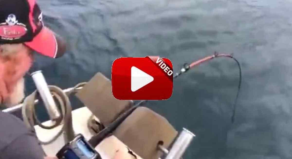 Mira lo que sucede cuando este pescador a punto está de sacar su captura