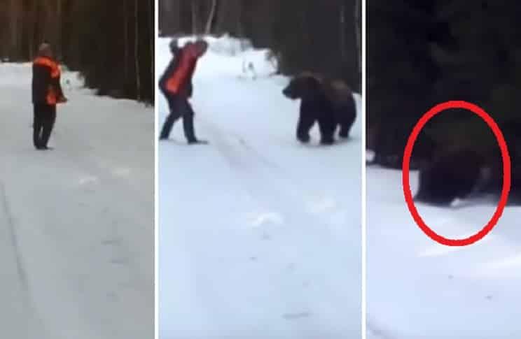 No lo recomendamos, pero así es como se debe espantar a un oso