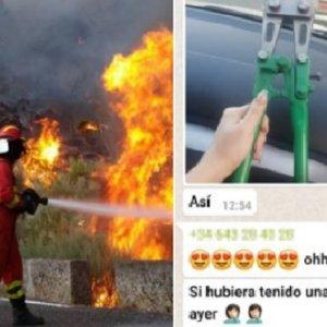 Investigan a grupos animalistas por robar perros tras los incendios de Madrid