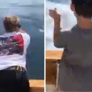 Graban cómo un tiburón engulle al pez que pescaba una familia