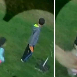 Un coyote se cuela en el patio de una casa y ataca a una niña de 2 años