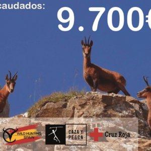 La Subasta Solidaria recoge cerca de 10.000€ en favor de Cruz Roja España