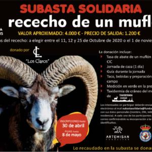 Artemisan subasta un rececho de muflón para recaudar fondos para la lucha contra el COVID-19