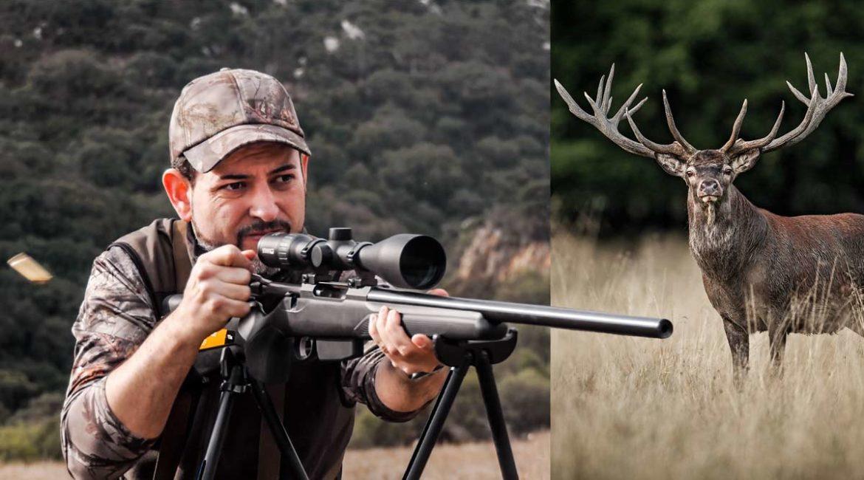 Probamos el Tikka T3X Varmint cazando ciervos en Los Alcornocales