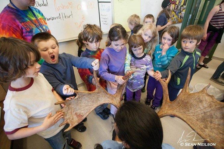 Un colegio enseña a los niños a despiezar piezas de caza y preparar su carne