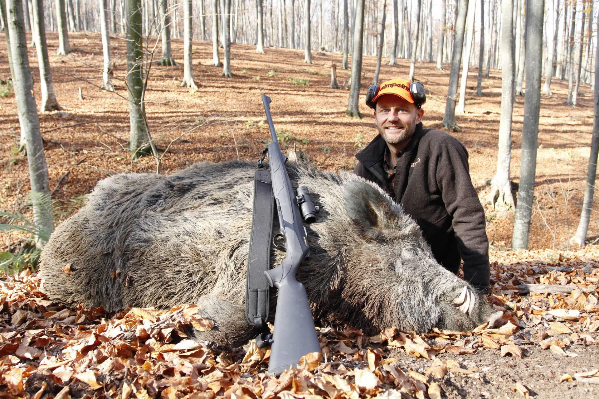 Concurso Wild Boar Fever