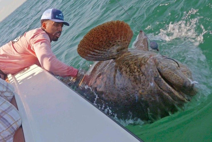 Wilson Chandler pesca un mero de 160 kilos-EDIT