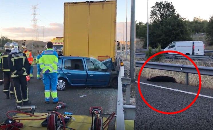 Muere un joven de 20 años en un accidente con un jabalí en Madrid