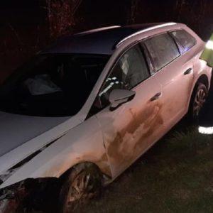 Una mujer se precipita con su coche por un terraplén tras chocar con un jabalí en Navarra
