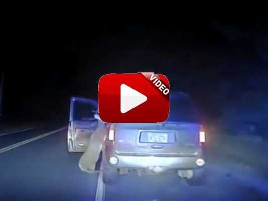 accidente-ciervo-carretera