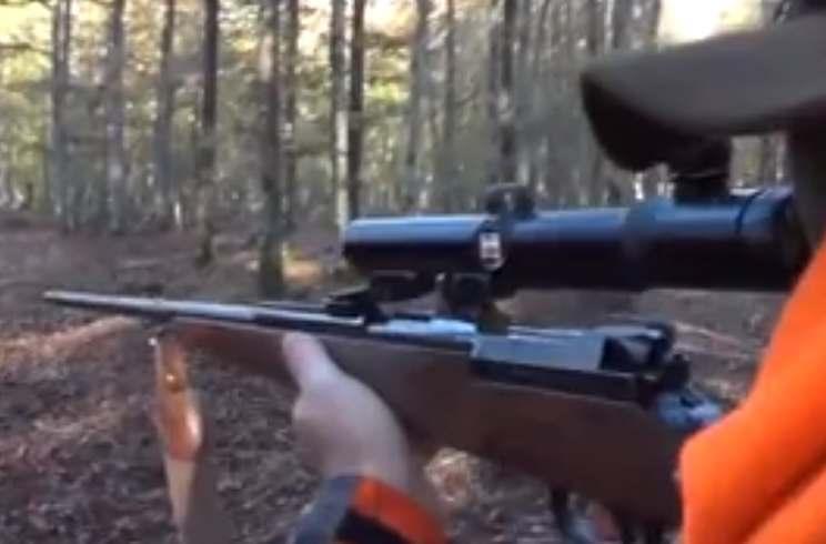 La acción de este cazador ha hecho arder las redes sociales