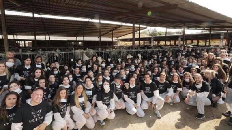 Cataluña pone fin a la impunidad de los animalistas que asaltan granjas