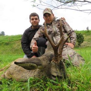 Hace historia al cazar el primer corzo de Llantones (Asturias)