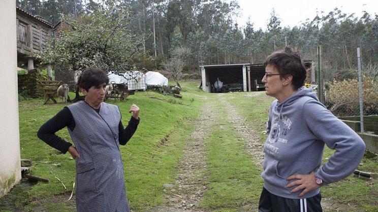 Dos de las afectadas por los ataques de lobo. / La Voz de Galicia