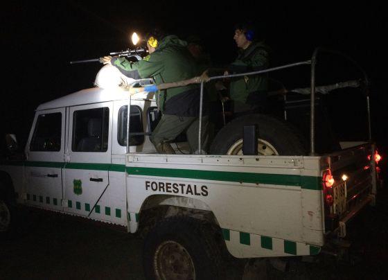 Agentes rurales durante una batida nocturna / Marta Rodríguez. El País